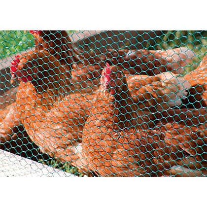 Image for Apollo PVC Hexagonal Wire Netting - 13mm from StoreName