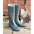 Wellingtons in Green - Size 11