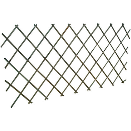 Image for Wooden Expanding Trellis - Green - 1.8x0.9m from StoreName