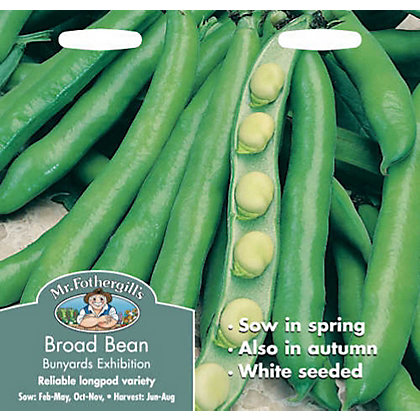 Image for Broad Bean Bunyards Exhibition (Vicia Faba) Seeds from StoreName