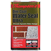 Thompsons Clear One Coat Water Seal Ultra - 5L