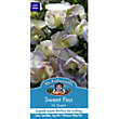 Sweet Pea High Scent (Lathyrus Odoratus) Seeds