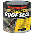Thompsons Emergency Roof Seal - Black - 1L