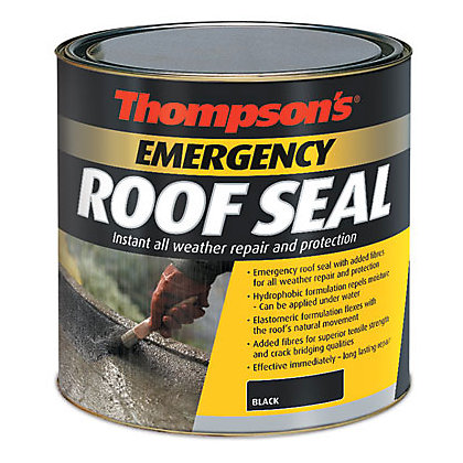 Image for Thompsons Emergency Roof Seal - Black - 1L from StoreName