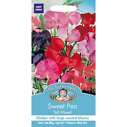 Image for Sweet Pea Tall Mixed (Lathyrus Odoratus) Seeds from StoreName