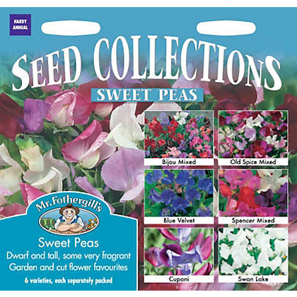 Image for Sweet Pea Collection (Lathyrus Odoratus) Bulbs from StoreName