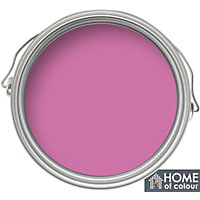 Home of Colour Bubblegum - Non Drip Gloss Paint - 750ml