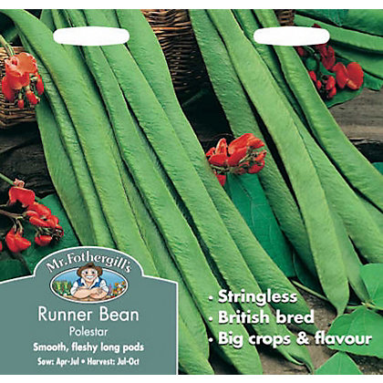 Image for Runner Bean Stringless Polestar (Phaseolus Coccineus) Seeds from StoreName