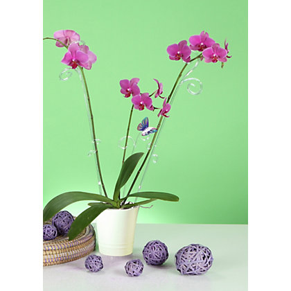 Image for Basic Orchid Pot - White from StoreName