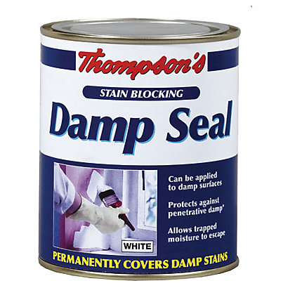 Image for Thompsons Damp Seal - 250ml from StoreName