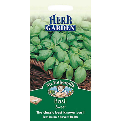 Image for Basil Sweet Genovese (Ocimum Basilicum) Seeds from StoreName