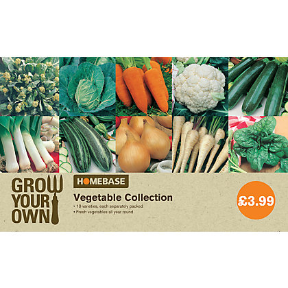 Image for Bumper Pack Vegetable Seed Collection from StoreName