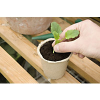Round Peat Pot - Pack of 12 - 8cm