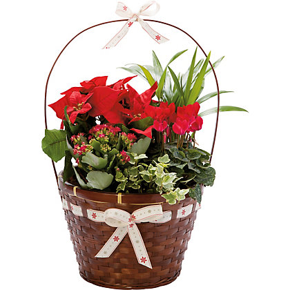 Image for Large Christmas Gift Basket from StoreName