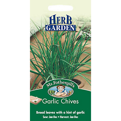Image for Garlic Chives (Allium Tuberosum) Seeds from StoreName